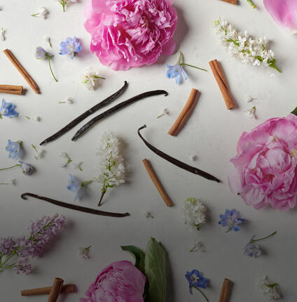 peonies, hydrangea blossoms, vanilla bean pods and cinnamon sticks